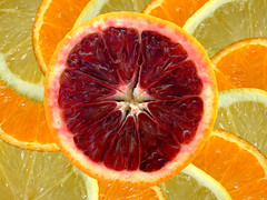 Red orange (TouTouke - Nightfox) Tags: red food orange white color detail leaves yellow closeup fruit circle dessert blood healthy shiny natural bright skin sweet vibrant background objects tasty fresh slice pile single tropical citrus organic bloody diet section isolated freshness vitamin