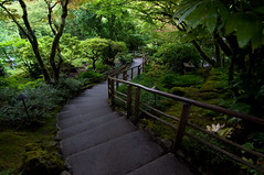 Down the Stairs (Arian Durst) Tags: canada japanesegarden bc britishcolumbia victoria stairway winding butchartgardens descending