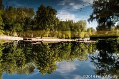 Reflection (Fergal1982) Tags: travel reflection budapest places inversion citypark vrosliget