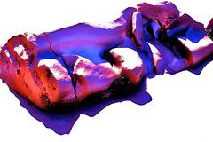 At The Beach: Obama's Nasty Headtrip (Mark A. Morgan) Tags: election dream nightmare asleep obama redstate bluestate