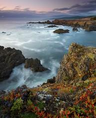 Step to the Edge - - - Sonoma Coast, California (ernogy) Tags: ocean california sea cliff seascape landscape coast pacific sonoma searanch ernogy