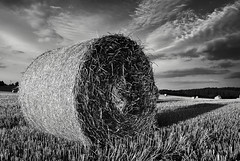 bale5 (Dave McLear) Tags: hay balestubblehay