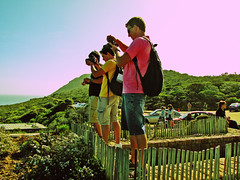 cape point (meeeeeeeeeel) Tags: africa travel men green tourism nature beauty animals southafrica nightlights natural photographers capetown capepoint tablemountain cidadedocabo kaapstad southernafrica belezasnaturais africancity ikapa urbanafrica