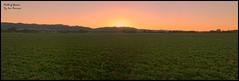 Field_of_Greens (Beetwo77) Tags: sunset panorama canon stitch pano sydney australia nsw stitching 1022mm mudgee giga nex autopano 1755mmf28 5n metabones nex7 nex5n sonynex7 sonynex5n smartadapter