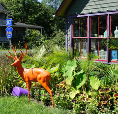 Orange Deer at the Green Cottage, High Falls, NY (Village Green Realty) Tags: firsthand highfallsnewyorkhighfallsnymarbletownnymarbletownnewyorkshawangunkmountainshudsonvalleyhudsonvalleyrealestateupstatenewyorkrealestatecoldwellbankervillagegreen villagegreenrealtyhighfallshistoryhistorichighfallsnewyorkcitytravelnewyorkattractionstravelnewyorkhighfallscanalsinnewyorkhighfallsrealestatehighfallshomesforsalehousesforsalehighfallscatskillsrealestatenycgetaw coloreddeerlawnornament thisisny