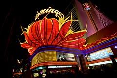 Las Vegas Strip - After Dark (Don3rdSE) Tags: canon eos lights hotel nightshot lasvegas flamingo nevada noflash casino september nv strip 7d hotels fountains afterdark 2012 canon7d don3rdse 3rdsiblingphotography