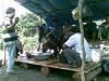 16092012.jpg (aguntama2010) Tags: belitung manggar