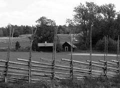Roundpole Fence (Steffe) Tags: monochrome nationalpark tyresta grdesgrd roundpolefence tyrestadagen