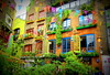 Neal's yard (Franco Beccari) Tags: world city trip travel blue red vacation white holiday black color colour green art tourism me nature yellow night wow photography photo cool nikon europe day