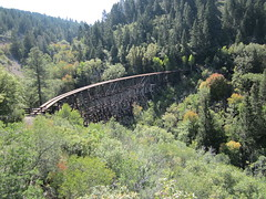 Lincoln National Forest, New Mexico