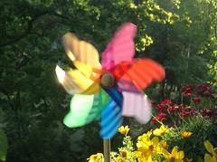 Summer  Evening on Balkony - Windiger Abend auf dem Balkon (Sockenhummel) Tags: windmhle windrad wind bunt balkon sommer