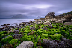 Elgol, Isle of Skye | SCOTLAND (w.mekwi photography [here & there]) Tags: longexposure westernisles seaweeds isleofskye uk scotland cloudy cuillinhills leebigstopper wmekwiphotography green elgol landscape nikond800 rocks