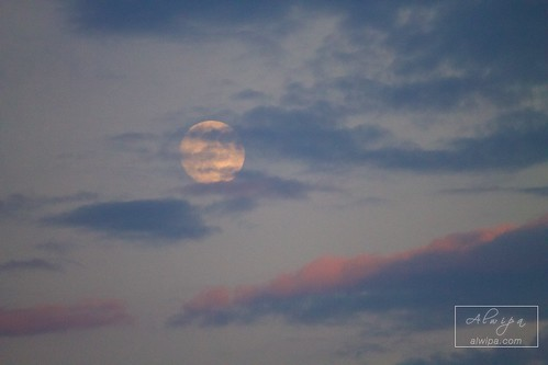 """The Moon • <a style=""""font-size:0.8em;"""" href=""""http://www.flickr.com/photos/104879414@N07/28926094052/"""" target=""""_blank"""">View on Flickr</a>"""