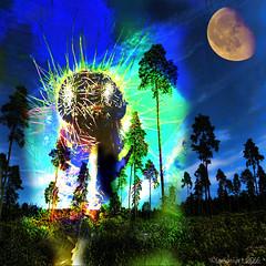 The time machine had a small glitch (Lemon~art) Tags: moon trees landscape hairy caterpillar hairycaterpillar manipulation