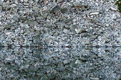 Pika Hotel (Dru!) Tags: devilsrange cauldron lake talus reflection gneiss boulders kootenay kootenays westkootenays slocan bc britishcolumbia canada