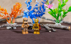 Storm Trooper and C3PO (Busted.Knuckles) Tags: home toys lego minifigures stormtroopers c3po pentaxk3 lightroom