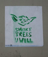 (TheMachineStops) Tags: 2013 outdoor nyc newyorkcity 420 yoda starwars trees joint blunt green stencil urbanart streetart stoner manhattan