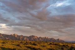 1608 Pusch Ridge from the Cordones (c.miles) Tags: arizonastatetrustland bighornmountains cathedralrock mountkimball puschpeak puschridge santacatalinamountains tablemountain thecordones windowrock