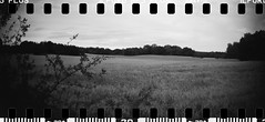 2016-08 - 069SR - DSC_0002 (sarajoelsson) Tags: sprocketrocket blackandwhite bw panorama panoramic sprocketholes digitizedwithdslr toycamera ilford sweden 135 35mm 2016 hp5 monochrome plasticlens everydaylife filmphotography filmisnotdead believeinfilm filmshooter film wideangle biskopsarn hc110 lomography lomo summer august