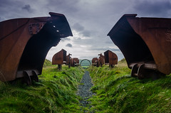 5 Modern Sculpture? (daedmike) Tags: sculpture kelty abandoned scotland art tractor parts excavator digger path landscape fifeearthproject fife