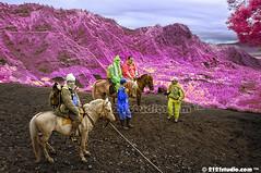 Riding Horse @ Wonderland (Infrared) (2121studio) Tags: horse nature indonesia ir nikon asia surrealism dream nikond50 ali illusion malaysia infrared indah wonderland kuda kuantan alam mountbromo mimpi nikonian eastjava malaysianphotographer jawatimur probolinggo travelphotographer ngadisari ilusi khayalan bromotenggersemeru convertedinfraredcamera 2121studio kuantanphotographer pahangphotographer cemaralawang ciptaanallahswt malaysianinfraredphotographer psygangnamstyle