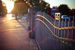 sunset fence (gato-gato-gato) Tags: abend altstetten feierabend juli kreis9 leica leicam9 leicasummiluxm50mmf14asph licht m9 schweiz sommer sonne sonnenuntergang zueri zuerich flickr gatogatogato rangefinder wwwgatogatogatoch gatogatogatoch manualfocus manuellerfokus manualmode digital switzerland suisse svizzera zürich zurich zurigo züri albisrieden streetphotography street strasse strase onthestreets urbanstructures architecture architektur building gebäude haus house fencefriday happyfencefriday freitag fence zaun