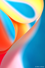 The Curves (bnilesh) Tags: light abstract paper pattern curves shapes canonef100mmf28usmmacro canoneos5dmarkii