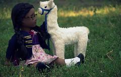I've had motivation. (* H e i d i ^ _ ^) Tags: sonali dolls llama ag backtoschool americangirl