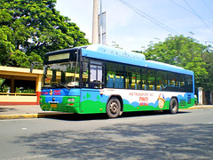 Pinoy CNG Bus (eugenegene01) Tags: china city bus buses philippines transport co enthusiast hm society ltd inc pinoy global cng lawton philippine bonifacio alabang yutong philbes eugenegene01 hm0020 exbgc