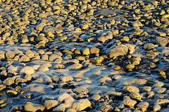 Good ol days (sicksadlittleworld) Tags: sea portrait people praia beach southamerica argentina strand mar meer stones praha playa steine riogallegos piedras sudamerica argentinien suedamerika