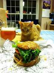 365 Days Project 028/365: A burger and a beer with Steve! (_BuBBy_) Tags: two orange india beer drunk bells ginger with drink stevie burger tabby steve beverage ale pale va sterling ipa joint drank the hearted drunked 20165 bgr steviekins stevieputzle stevenator