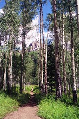 Pope's Nose and Aspen grove along the Los Pino...
