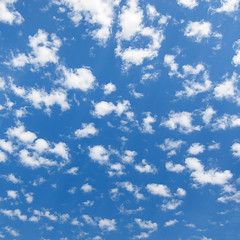 Scatterclouds (Chicken) Tags: blue summer sky usa cloud white abstract texture weather clouds square washington unitedstates many small sunny redmond getty puffy fragile scattered