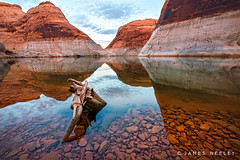 Morning Serenade (James Neeley) Tags: landscape utah lakepowell bullfrog jamesneeley mokicanyon