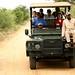 3 dias de safari na Reserva Natural Balule
