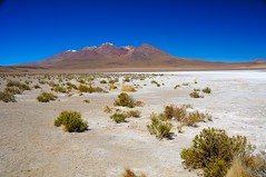 Vulcan in Bolivia (Werner_B) Tags: trip blue summer vacation mountain southamerica nature beautiful photography photo high foto fotografie desert image picture bolivia vulcan bild vulcano altiplano landsacpe oruro potosi tunupa wernerbuchel