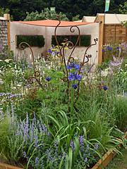 RHS Tatton Park Show Garden (alison's daily photo) Tags: rhs tattonpark flowershow