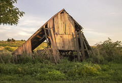 No Refuge from the Storms (SteveFrazierPhotography.com) Tags: country countryside barn wooden delapidated old decaying fallingapart farmland evening landscape scene scenery stevefrazierphotography midwest america rural boards