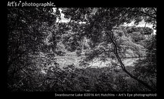 Swanbourne Lake (Art's Eye photographic) Tags: arborial lake rural bucolic freshwaterlake park parklandestate landscape nature trees woods coombe valley pughdeanbottom countryside arundel westsussex