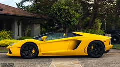Lamborghini Aventador Roadster (David Coyne Photography) Tags: lamborghini lamborghiniaventador automotive auto automobile automotivated amazing action tumblr flickr supercar supercars socal series symbolic v10 v12 yellow fast car canon california canoneos5dmarkiii cars