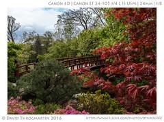 2016_05_07_15824_LR_upd_5x7 (dthrog00) Tags: 6d 24105l andersonjapanesegardens bridge rockford illinois