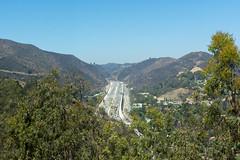 I405 (cokeclsc) Tags: august2016 california getty losangeles museum night perseid perseidmeteorshower sky unitedstates us