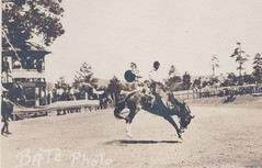 Cowboys Cowgirls & Rodeo RPPC c.1930a RIDE THAT BEAST Bronco Bustin Round-Up and Rodeo FUN Photographer BATES1 (UpNorth Memories - Donald (Don) Harrison) Tags: vintage antique postcard rppc don harrison upnorth memories upnorth memories upnorthmemories michigan history heritage travel tourism michigan roadside restaurants cafes motels hotels tourist stops travel trailer parks campgrounds cottages cabins roadside entertainment natural wonders attractions usa puremichigan