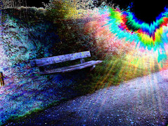 (psychedelic world) Tags: wohltorf path weg bank bench sun sonne light gras grass grser leaves bltter pflanzen plants nature natur colours farben hope psychedelisch psychedelic psychedelicworld