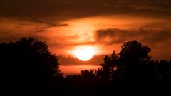 Sunset (DJawZ) Tags: sunset sunsetwx trees sun clouds nj new jersey fuji fujifilm red dark