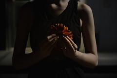 maw (Moonpollution) Tags: maw girl model hands night urban city flower shadow shadows light sweet lights black