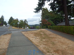 """""""Art Interruptions 2016"""" makes its way to the Rainer Valley East-West Neighborhood Greenway with whimsical temporary installations (Seattle Department of Transportation) Tags: seattle sdot transportation art artinterruptions2016 greenway rainier se officeofartsculture arts 1forartfunds walktober annual temporary program newholly othello brighton lakewood sewardpark installations kembaopio"""