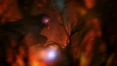 387290_20160922202739_1 (fettouhi) Tags: ori blind forest fettouhi games screenshots