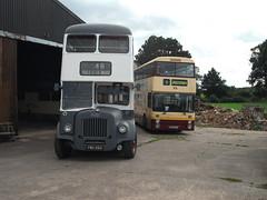 Daves Daimler duo (eastlancsleopard) Tags: bus 6960 150 chester bolton preserved daimler 79 leyland fleetline gmt lut 583 gmpte doubledeck selnec eastlancs 6650 northerncounties lancashireunited ncme chesterbus cvg630 elcb fe30agr bcb613v pbn668