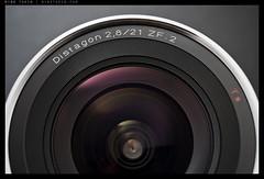 _8015935 copy (mingthein) Tags: macro zeiss t nikon bokeh g carl micro 221 ming speedlight diffuser afs distagon zf onn 2128 6028 strobist thein sb900 zf2 photohorologer mingtheincom afs6028g d800e